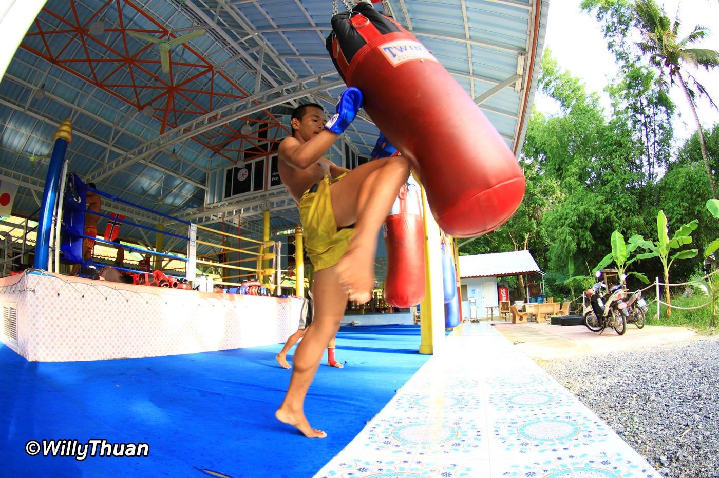 Muay Thai Camps in Phuket