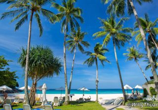 Karon Beach Photos