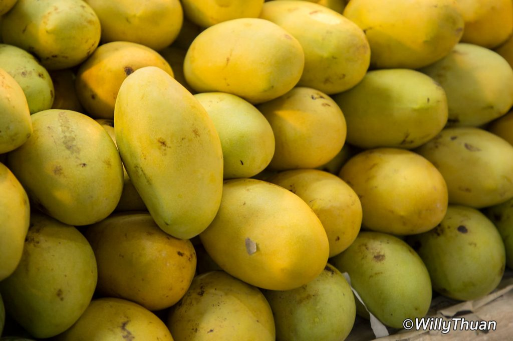 Mangoes in Phuket