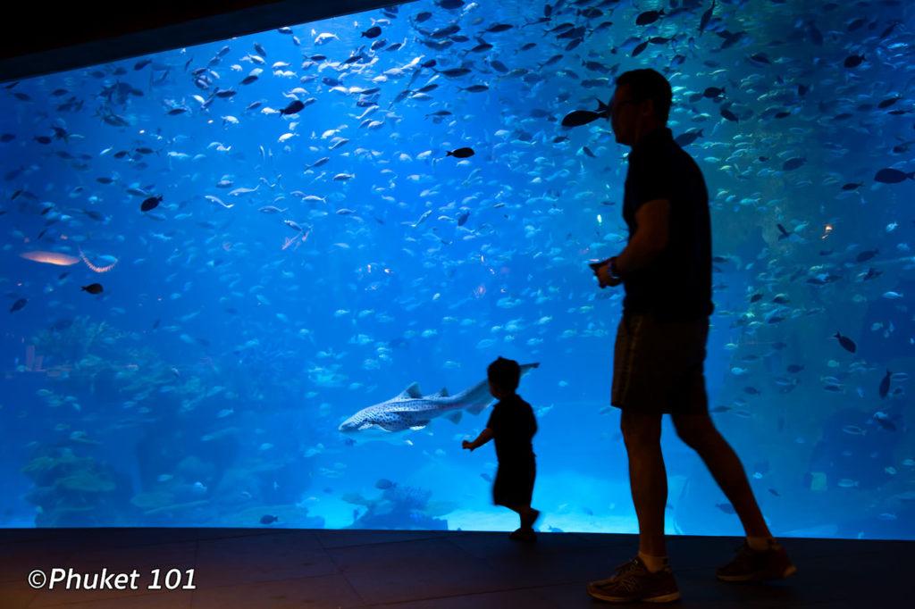 The main aquarium at Phuket Aquaria in Central Floresta