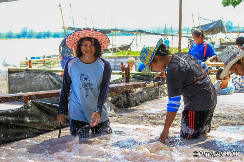 Jellyfish Market in Phuket