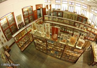 Bangkok Forensic Museum at Siriraj Hospital