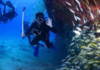 Phuket Best Dive Centers