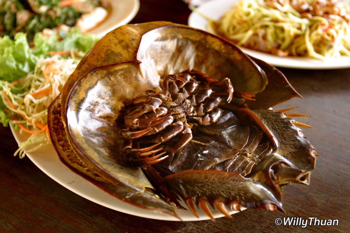 Weird Food in Phuket