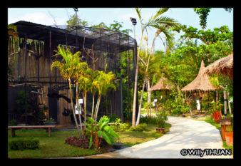 phuket-bird-park-zoo