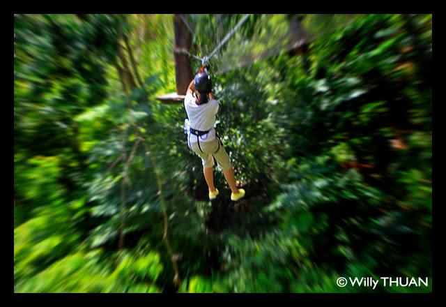 Phuket Tree Adventures
